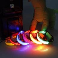 Reedog nabíjecí svíticí obojek pro malé, střední a velké psy