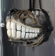 "Náhubek pro psy Reedog design ""Smile"""